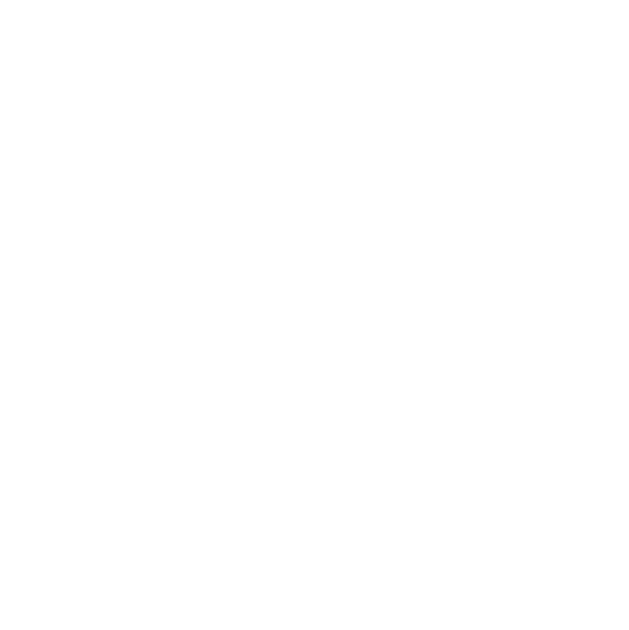 The Australian Partner Visa Experts